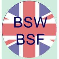Vis anglaise BSW-BSF